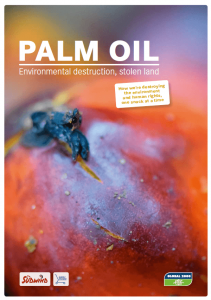 Palm Oil - environmental destruction, stolen land - download research report